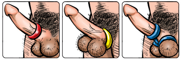 Sex Toys : Cockrings