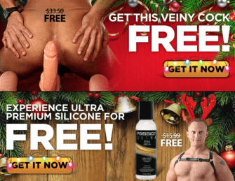 Sex Toys: Your Free Gifts For December